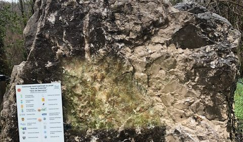 Réaction des associations mémorielles à l'acte de vandalisme sur la stèle de Thuriège à Vira